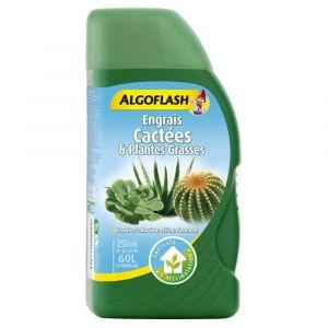 Algoflash Engrais Cactées et Plantes Grasses 250 mL