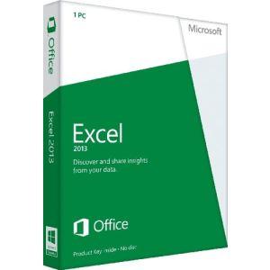 Excel 2013 [Windows]