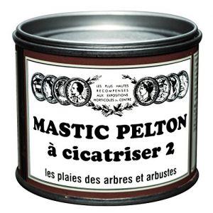 Pelton Mastic à Cicatriser 400G