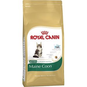 Royal Canin Feline Breed Nutrition Maine Coon 36 Kitten - Sac 400 g
