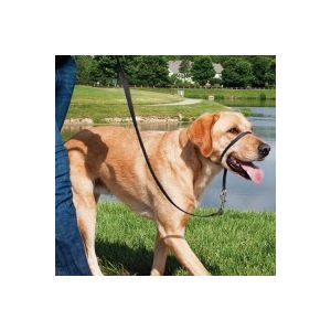 PetSafe Licol Easy Walk taille S