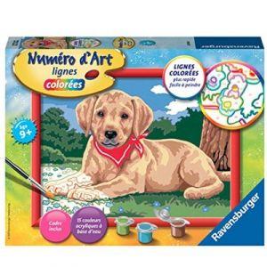 Ravensburger Numéro d'Art lignes colorées Labrador au bandana