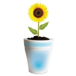 Pot lumineux LED pour plante