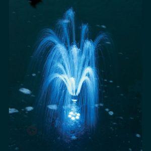 Image de Esotec 101792 - Eclairage à LED pour fontaine