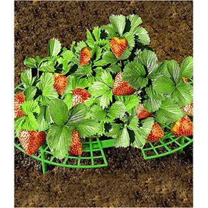 Wenko Support pour fraises
