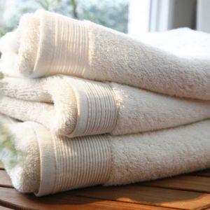 Blanc des vosges Eponge unie Gant Coton Ivoire 16x22 cm