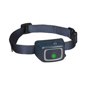 PetSafe Collier anti-aboiement à jet pour chien - kit collier anti-aboiement + recharge à la citronnelle + recharge inodore (3,14 mL chacune)
