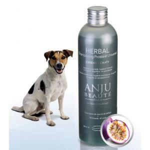 Anju Beauté Paris Herbal - Shampooing protéiné universel pour chien et chat