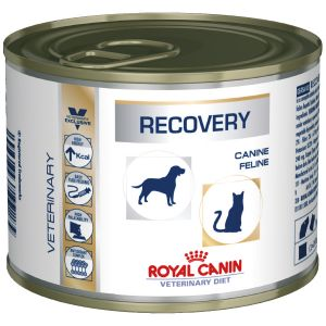 Royal Canin Boîtes Veterinary Diet Recovery Contenance : 12 boites de 195 g