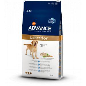 Advance Croquettes chien Labrador - Sac 12 kg