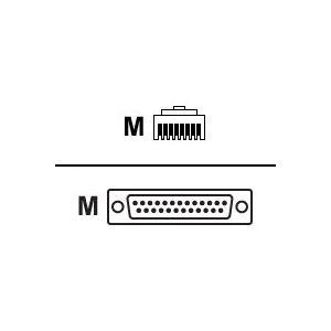 Avocent CAB0025 - Câble réseau RJ45 Male vers DB25 Male
