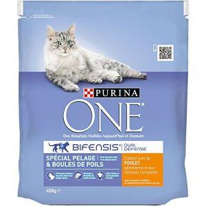 Purina ONE Spécial Pelage & Boules de Poils - Croquettes pour chat adulte lot de 10x 450g