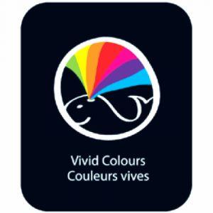 Conté à paris Crayons de couleur Aquarellables - Boîte Métal de 12