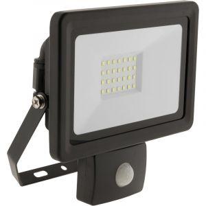 Elexity Projecteur LED étanche 30W Noir avec détecteur
