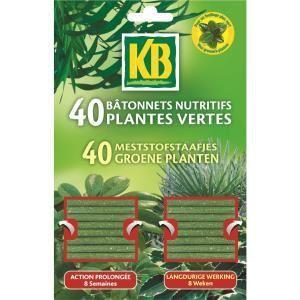 KB 40 bâtonnets nutritifs pour plantes vertes