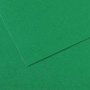 Canson Manipack de 25 feuilles papier dessin MI-TEINTES 160g 50x65cm vert billard Ref-321234