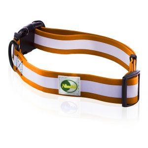 Supersteed Collier fluorescent pour chien ajustable avec boucle de fixation rapide - 210-320 mm, orange