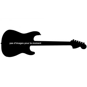 Fender Deluxe Stratocaster 2016