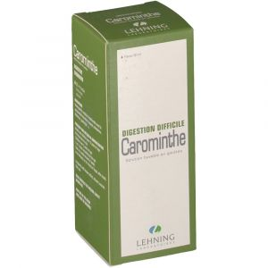 Lehning Carominthe - 90 ml SOLUTION GINGIVALE