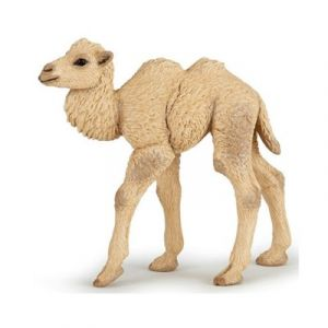 Image de Papo 50221 - Figurine bébé chameau