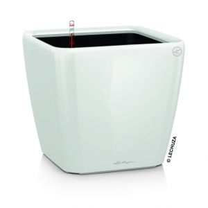 Lechuza Pot à réserve d'eau Quadro Blanc L.43x43 x H.40 cm