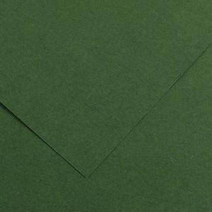 Canson 200040068 - Feuille Iris Vivaldi 50x65 120g/m², coloris vert sapin 31