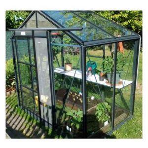 ACD Serre de jardin en verre trempé Royal 22 - 3,50 m², Couleur Noir, Filet ombrage non, Ouverture auto Oui, Porte moustiquaire Non - longueur : 1m50