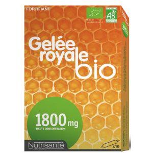 Nutrisanté Gelée royale bio 1800 mg - 10 ampoules