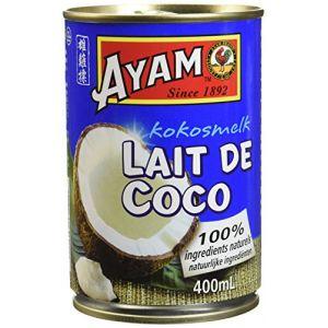 Ayam Lait de coco 400ml