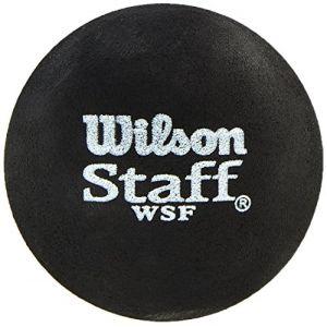 Wilson Balles squash Staff Fast Single Blue Dot