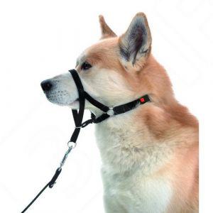 Karlie Licol master de contrôle pour chien taille 6