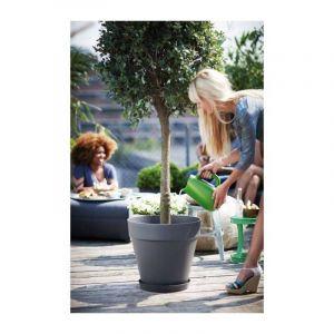 Loft URBAN Soucoupe pour pot de fleur - Ronde - Ø21 cm - Mûre voile - Pratique contre les tâches d'humidité sur la table ou les dalles de la terrasse