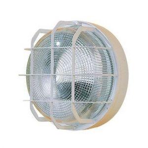 Ebénoid Hublot extérieur fluo 2X9W Ø 225mm et grille blanc verre avec lampe 2G7 4000K ballast elec CL2 IK07 IP44 série 62 077787