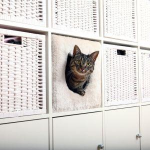 Trixie Abri douillet pour chat pour étagères Ikéa