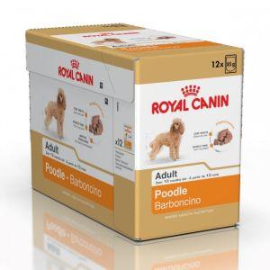 Royal Canin Breed Poodle pour chien 12x 85 g