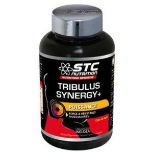 Scientec nutrition Tribulus Synergy+ 90 gélules