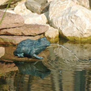 Ubbink 1386008 - Petite Grenouille pour bassin de jardin