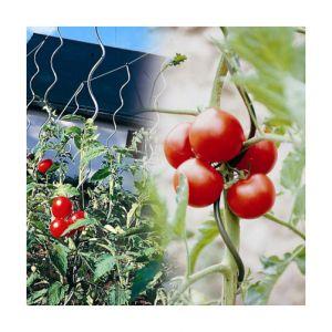 Ose Lot de 5 Tuteurs à tomates agrippants avec chas