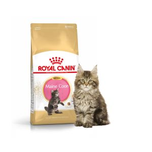 Royal Canin Feline Breed Nutrition Maine Coon 36 Kitten - Sac 4 kg