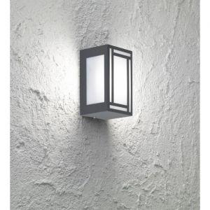 Wofi Applique d'extérieur LED Padovani II