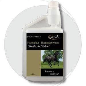 Horse Master Hargophyt Harpagophytum pour cheval
