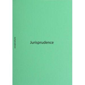 "Exacompta 350021NE - Paquet de 40 sous-cotes de plaidoirie ""Jurisprudence"", en carte 160 g/m², coloris vert jade"