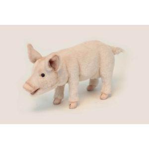 Anima Peluche Cochon 30 cm