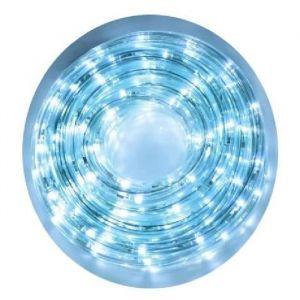 Christmas Dream Guirlande cordon lumineux 384 LED blanc (16 m)