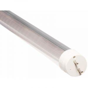 Silamp Tube Néon LED 60cm T8 10W - Blanc Froid 6000K - 8000K