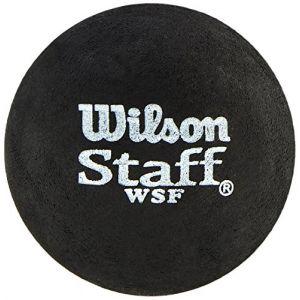 Wilson Balles squash Staff Slow Single Yellow Dot
