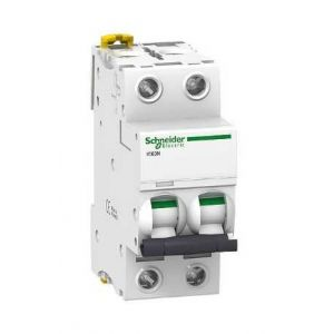 Schneider electric Disjoncteur IC60N 2P 20A Courbe B ACTI 9