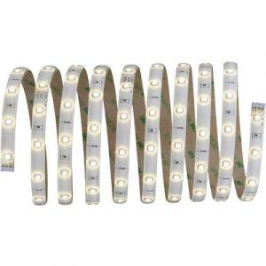 Paulmann Ruban LED avec connecteur mâle YourLED 70592 12 V 300 cm blanc chaud 1 pc(s)