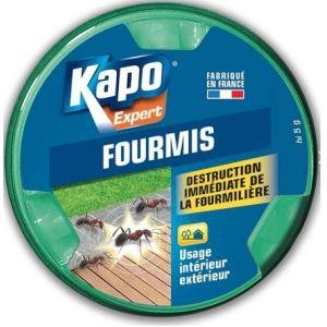 Kapo Anti-fourmis appât - Lot de 2x 10g