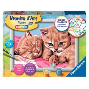 Ravensburger Deux chatons roux - Peinture au numéro Numéro d'Art lignes colorées